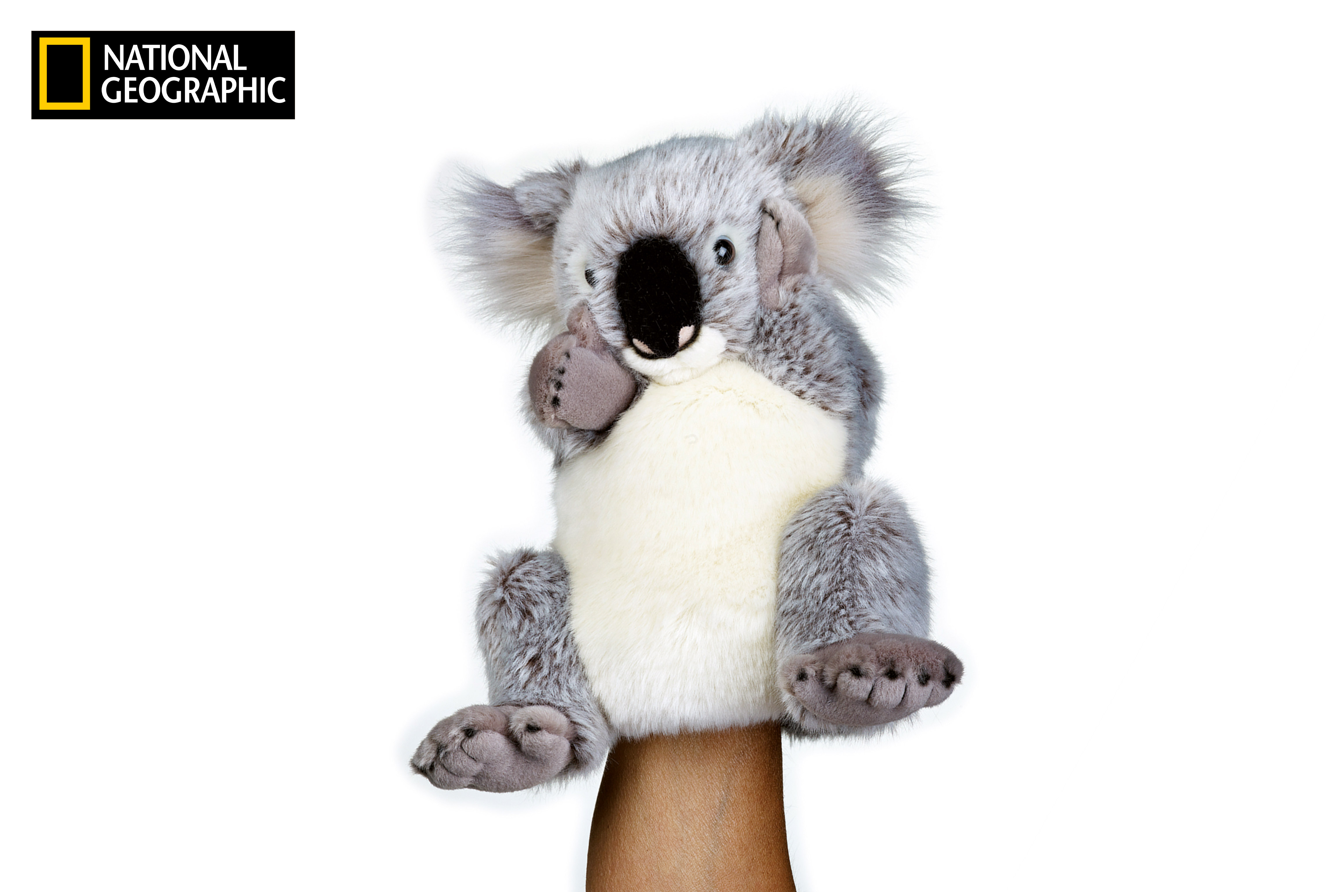 NATIONAL GEOGRAPHIC maňásek Koala 26 cm